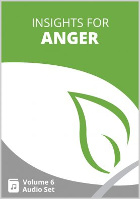 Insights for Anger Volume 6 MP3 Set